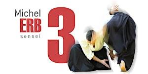 Seminario de Aikido - Michel Erb - Cor/Arg 03