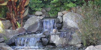 Pond-less Water Features