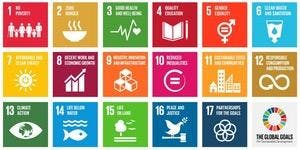 Making Global Goals Local Business - Leicester