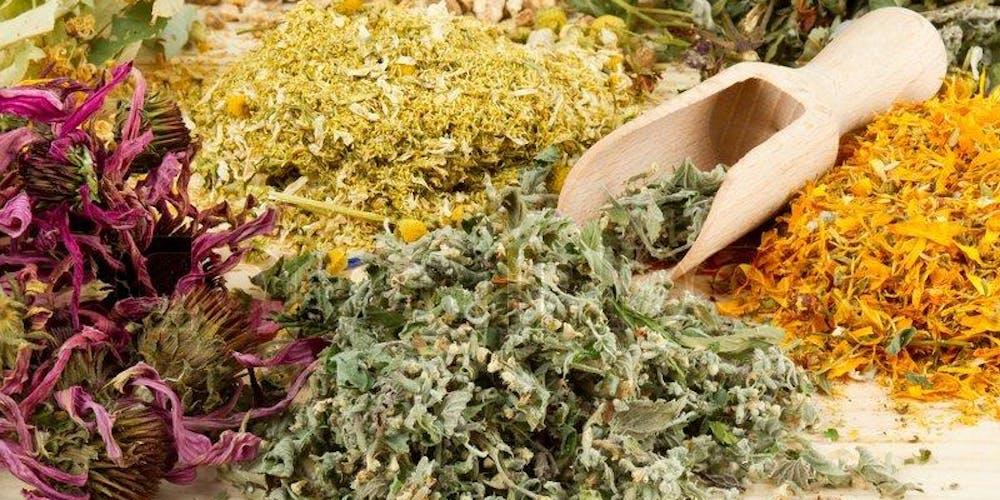 HERBS 101 - Intro to Medicinal Herbs Tickets, Sun, Sep 8, 2019 at 10