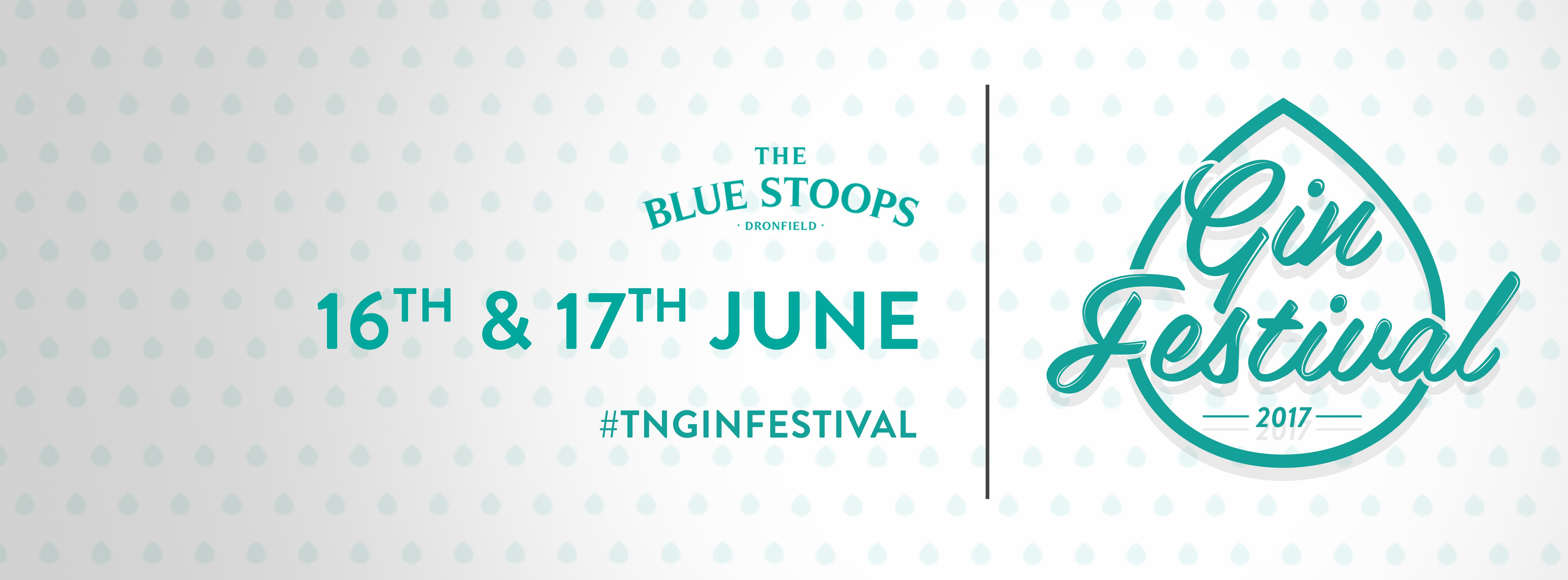 The Blue Stoops Gin Festival