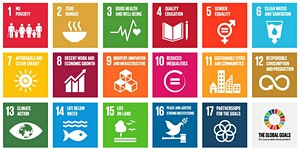 Making Global Goals Local Business - Glasgow