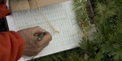 Learn Plant, Weed, and Insect Identification Skills