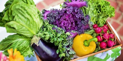 Bringing the Farm Home: How to Really Grow Organic Vegetables