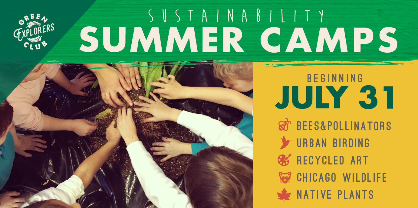 Green Explorers Club Summer Camp! (Ages 4-6)