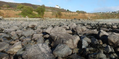 Capturing Our Coast Survey Day - Gylly Beach, Falmouth