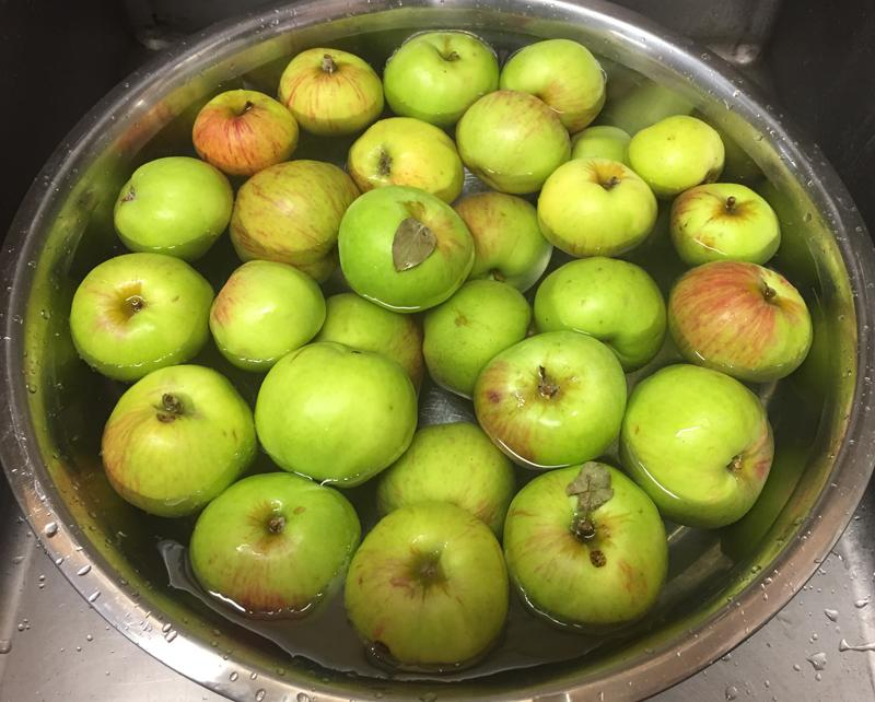Preservin' for the Hungry: Applesauce!