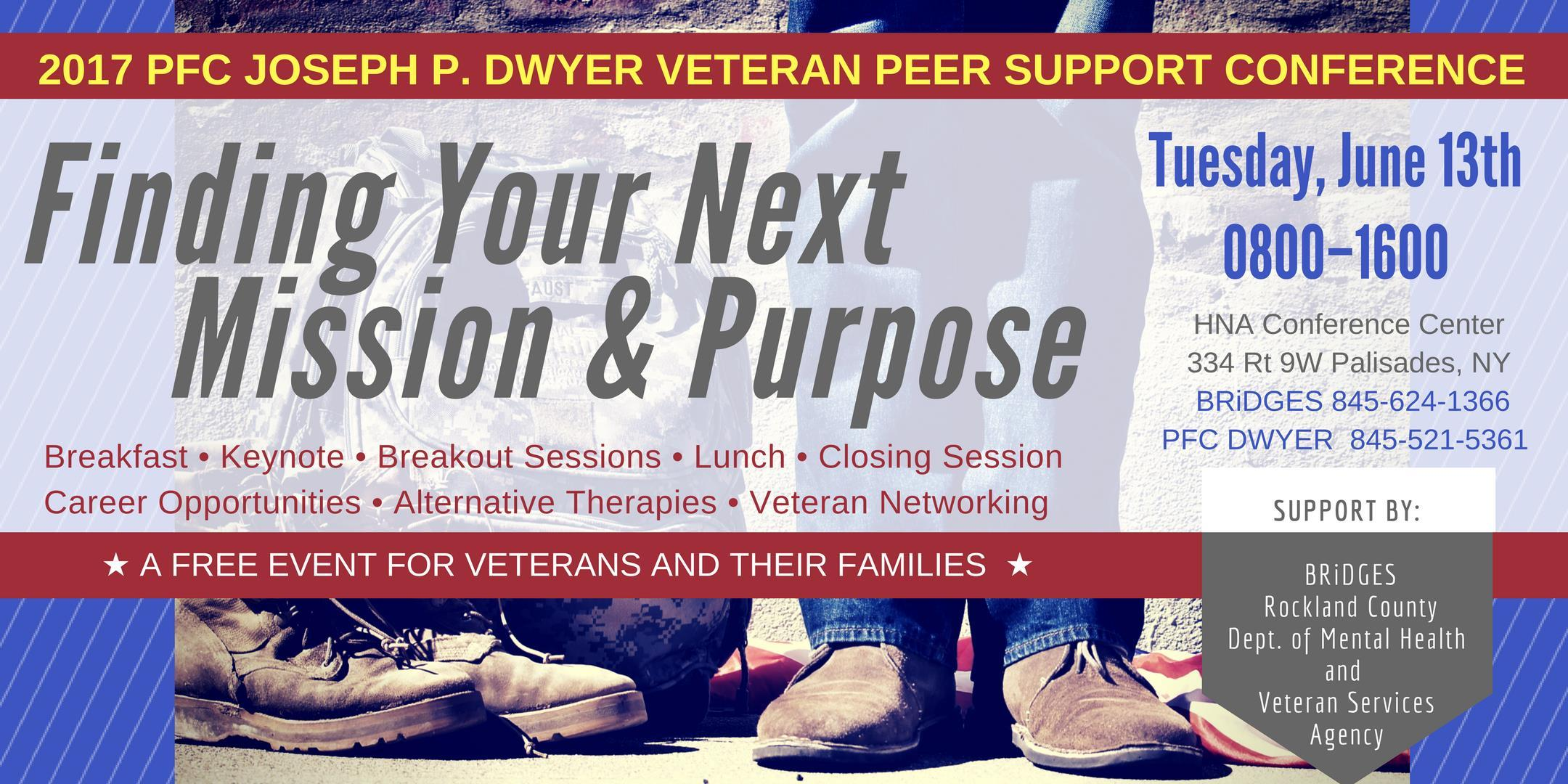 2017 PFC Joseph P. Dwyer Veteran Peer Support