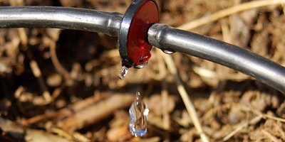 Create a Basic Irrigation System