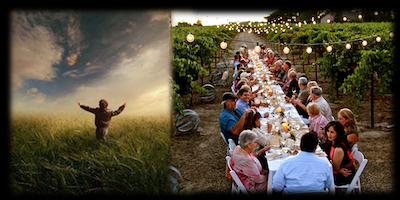 """""""Il Senso della Terra"""" Visita, Degustazione, Pranzo e Attività in Vigna"""