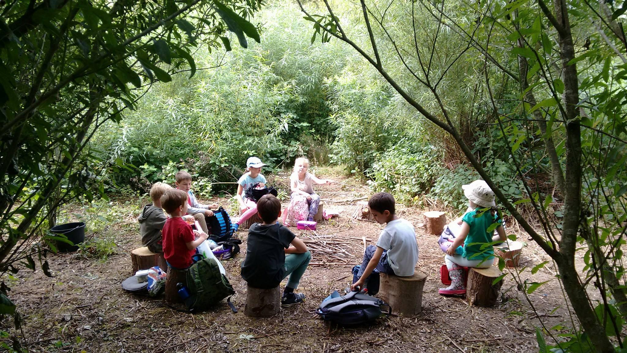 Holiday Adventurer's Day Camp Shepperton Will