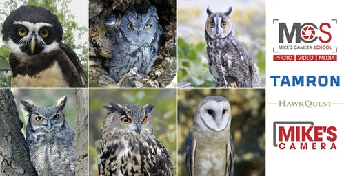 All Owl Photography Workshop with Hawk Quest & Tamron- Lecture & Critique- Park Meadows