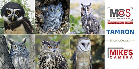 All Owl Photography Session-Only with Hawk Quest & Tamron- Bear Creek Lake Park tickets