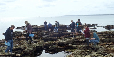 Capturing our Coast Field Event- Swanpool, Falmouth