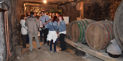 Degustacija vin v okviru XIV. Glasbenih večerov Tabor
