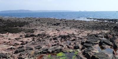 Capturing Our Coast Survey Day - Kingsand, Devon