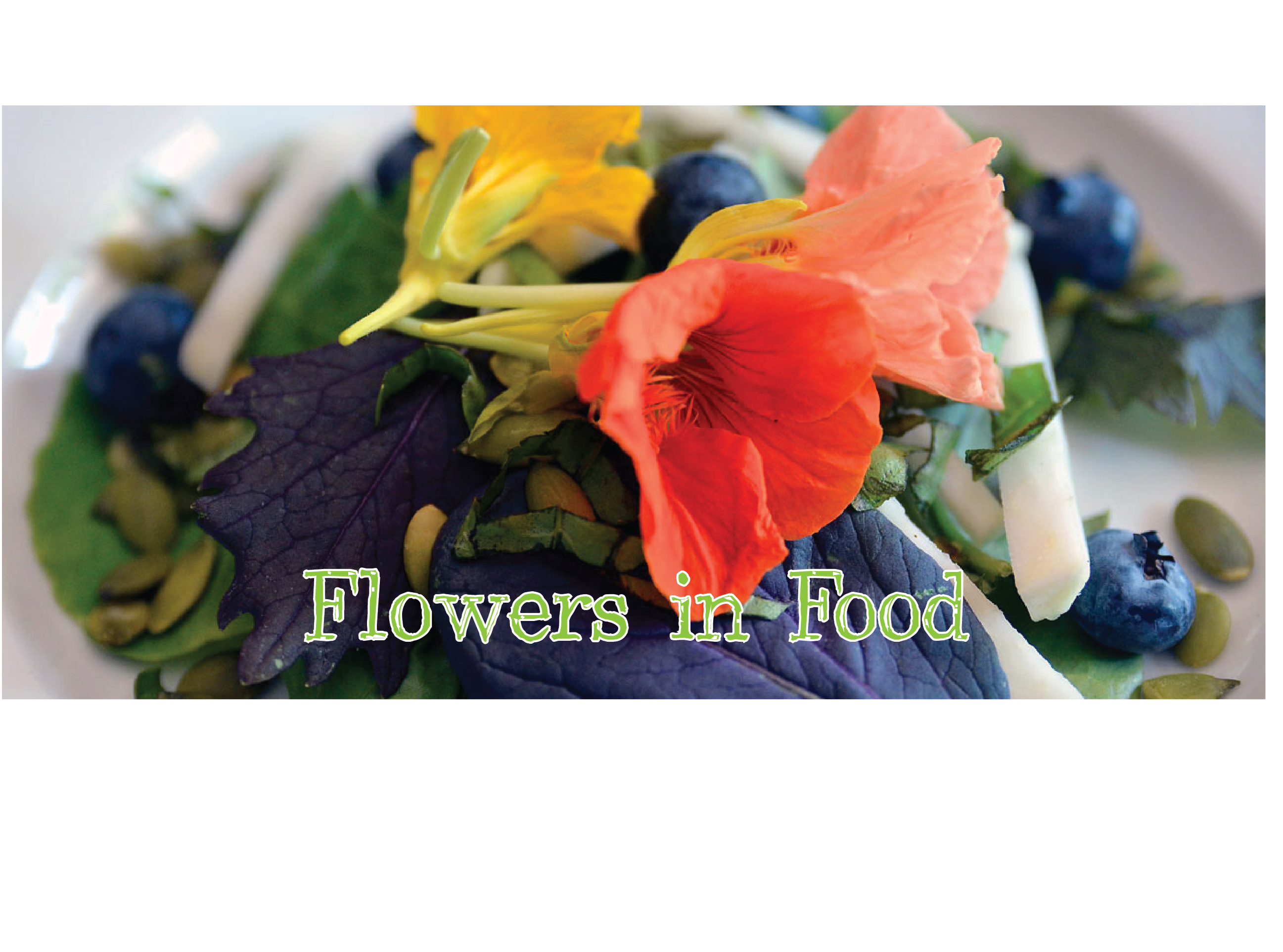 Flowers in Food: Edible Container Gardening W