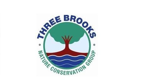 Bat Walk in Three Brooks Local Nature Reserve