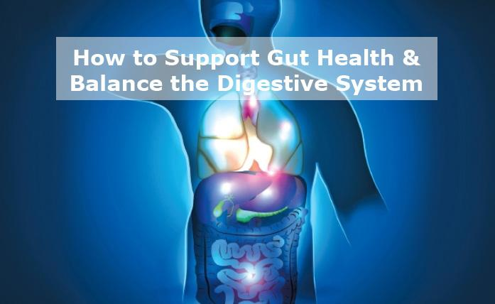 How to Improve Gut Health & Balance the Diges