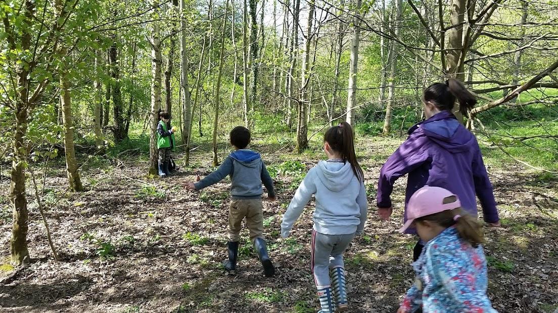 Summer Forest School 2017