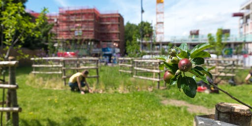 Brixton Orchard Volunteer Session