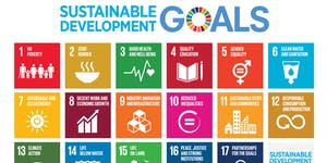 Sustainable Development Goals Youth Training-...