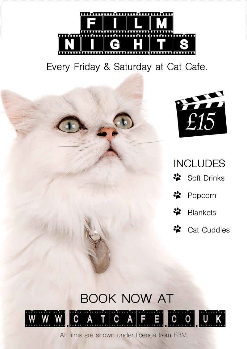 Film Night at Cat Cafe Manchester - Harry Pot