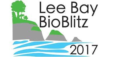 MBA/Coastwise/AONB Lee Bay BioBlitz