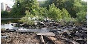 Dam Tour | Mill River Restoration
