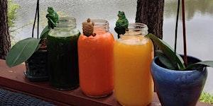 Two Week Fall Detox & Juice Fasting Renewal Retreat