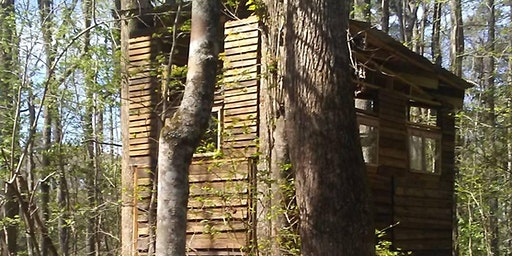 Treehouse Framing & Site Exploration (Volunteers Welcome)