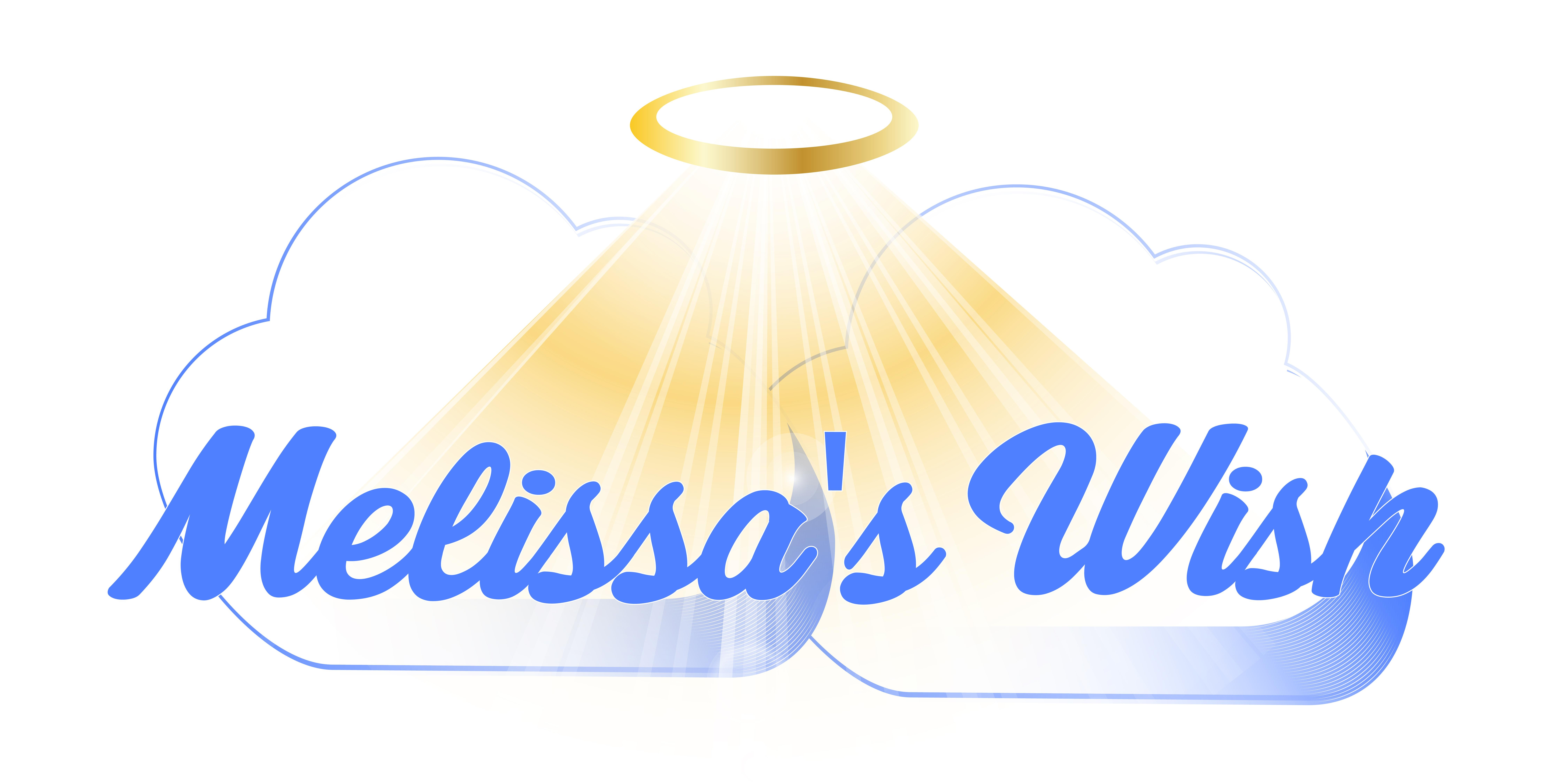 Melissa's Wish Networking Kickoff
