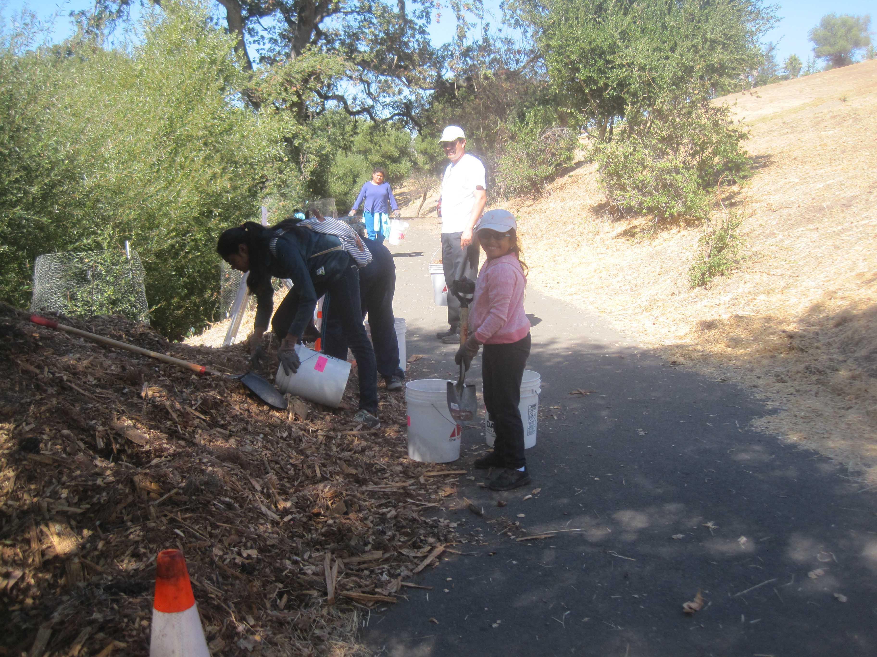Habitat Restoration Days for Sabercat Creek in Fremont, CA (Jan-Dec 2017)