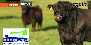 ReproActive Dederang - More Calves, More Often