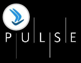 Pulse Networking Event - London
