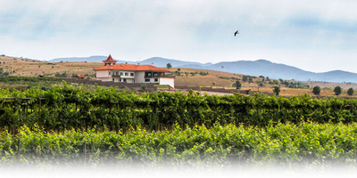 Experience Bulgaria in Wine- presented by Manastira Winery, Thracian Valley, Bulgaria