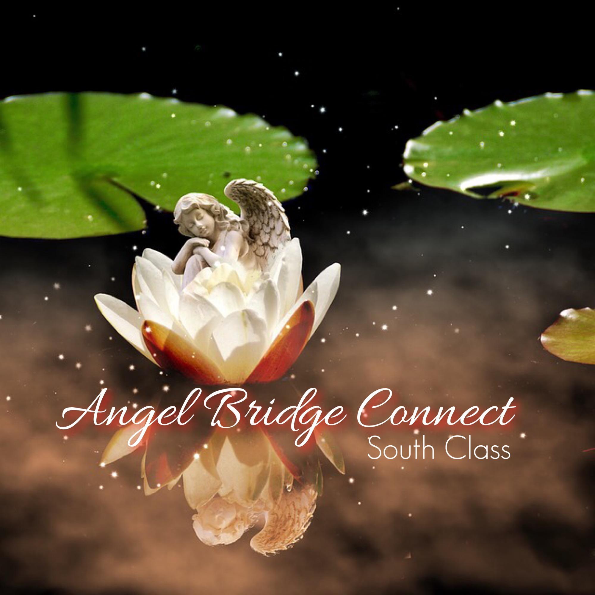Angel Bridge Connect South Class