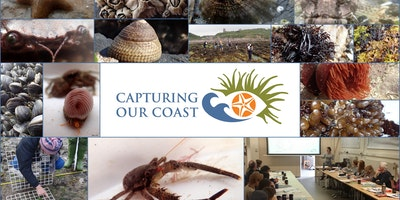 Capturing Our Coast Training - Plymouth, MBA