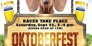 Hendersonville Oktoberfest Wiener Dog Derby- 2017 (4th...