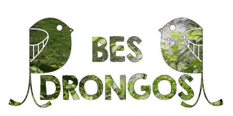 21/10 BES Drongos Prunus Trail Walk tickets