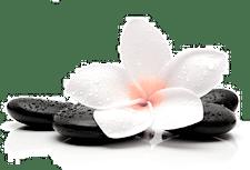 Yoga Wabi Sabi logo