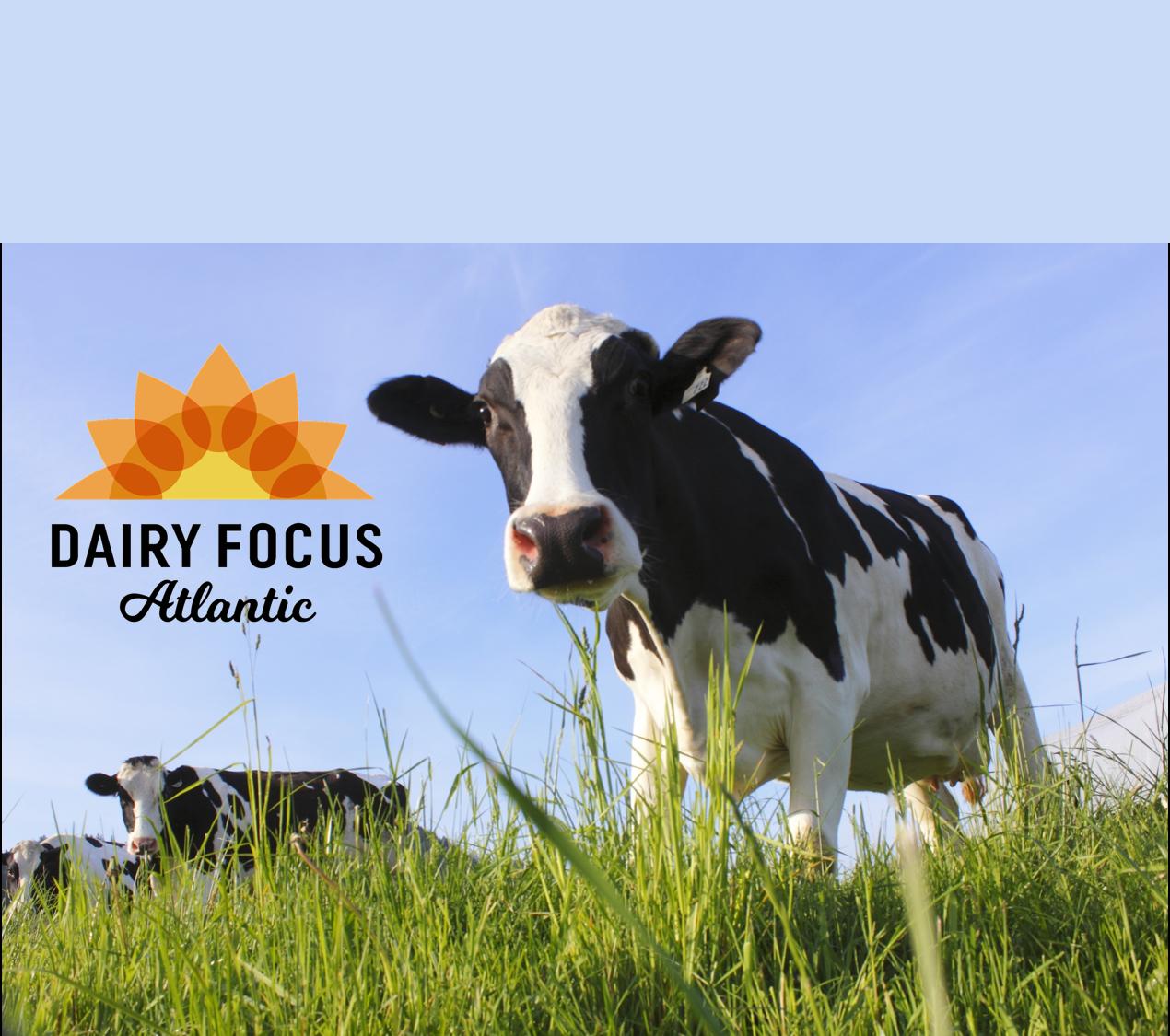 Dairy Focus Atlantic 2018