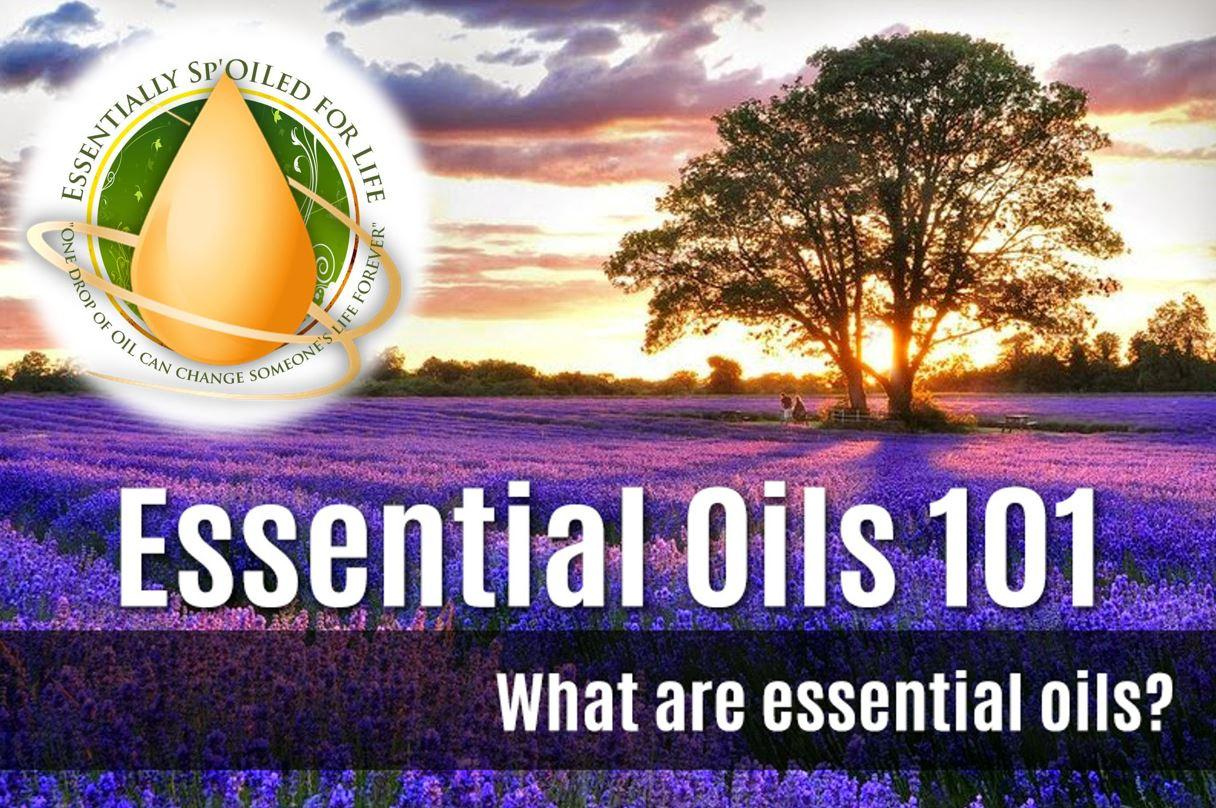 Essential Oils 101: North Haven, CT