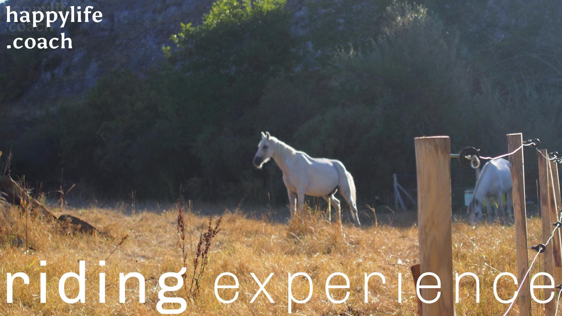 ADVENTURE SEMINAR: riding experience II. (Eng