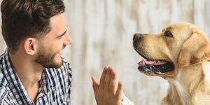 Pet Academy: cane e uomo, due vecchi amici