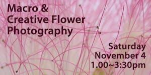 Macro & Creative Flower Photography