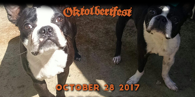 2nd Annual Oktolbertfest!