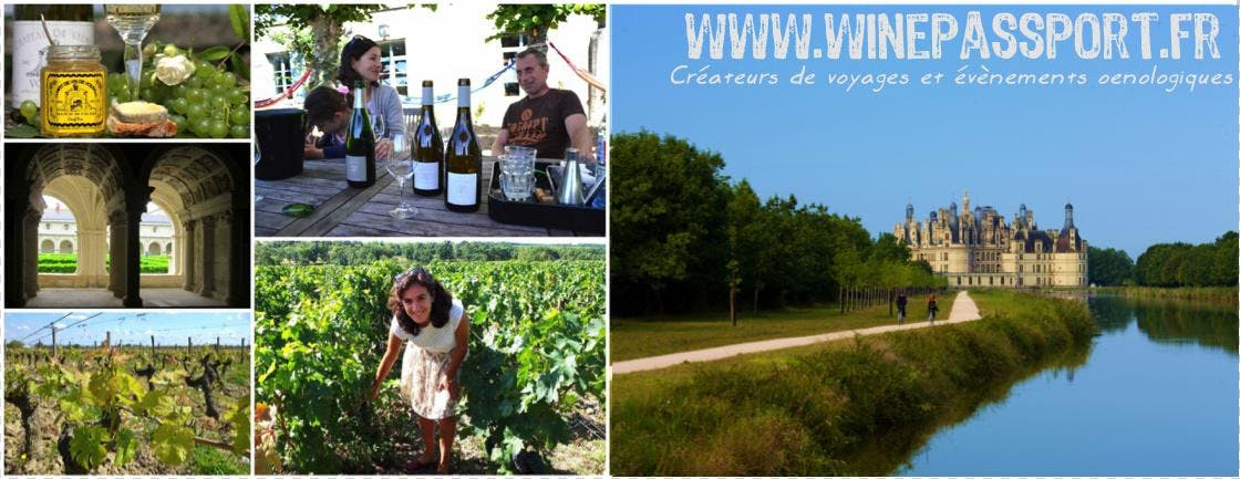 Castles & wines day trip to the Loire valley