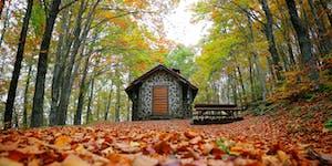 Photo Walk la magia del Fall Foliage nel Parco...