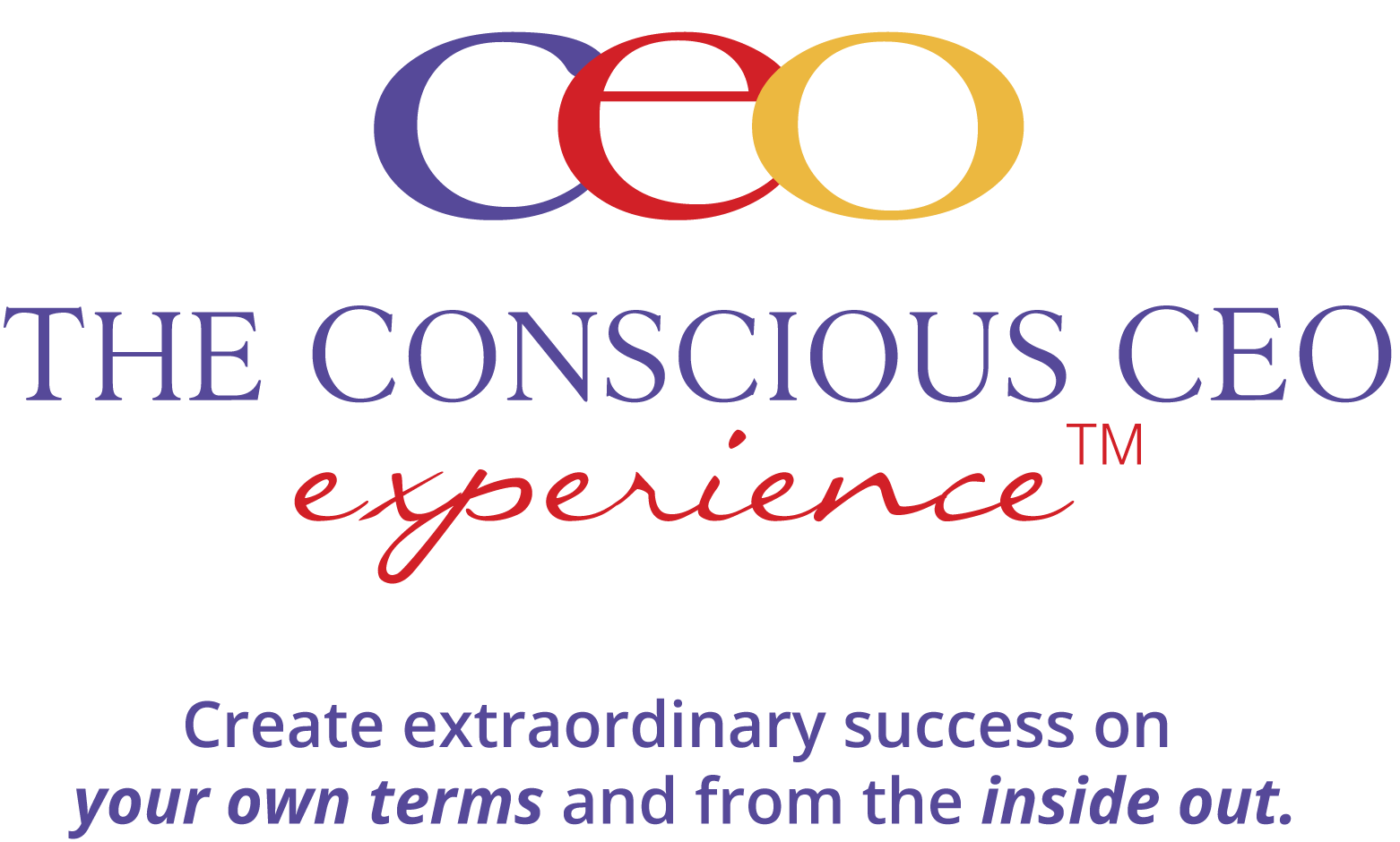 The Conscious CEO Experience™ (Live Workshop)